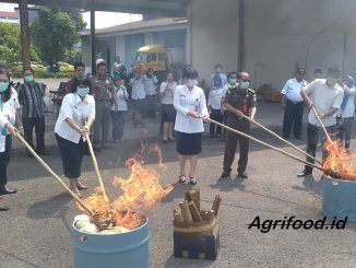 Ilustrasi pembakaran mie berformalin. (Ist)